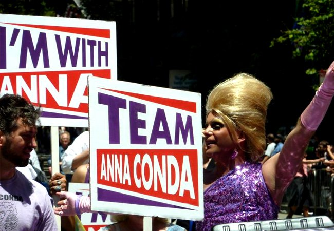 """Anna Conda"" for District 6 Supervisor"
